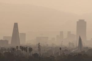 Imagen Ejes ambientales: qué son y cómo funcionan