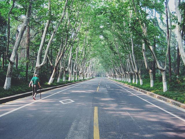 Los peatones no pueden cruzar por autopistas ni caminar por ellas. Si caminan en alguna carretera secundaria, han de hacerlo por el lado izquierdo para ver a los autos venir de cara.